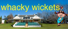 Whacky Wickets for Women